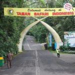 Rental Mobil Jakarta Taman Safari Cisarua